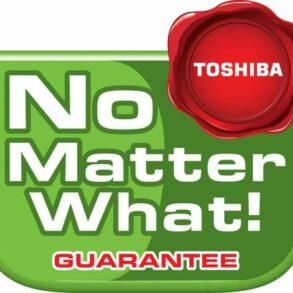 Toshiba NMWG logo