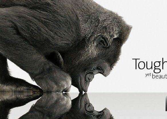 GorillaGlass 4jpg