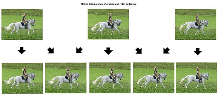 interpolacija pokreta