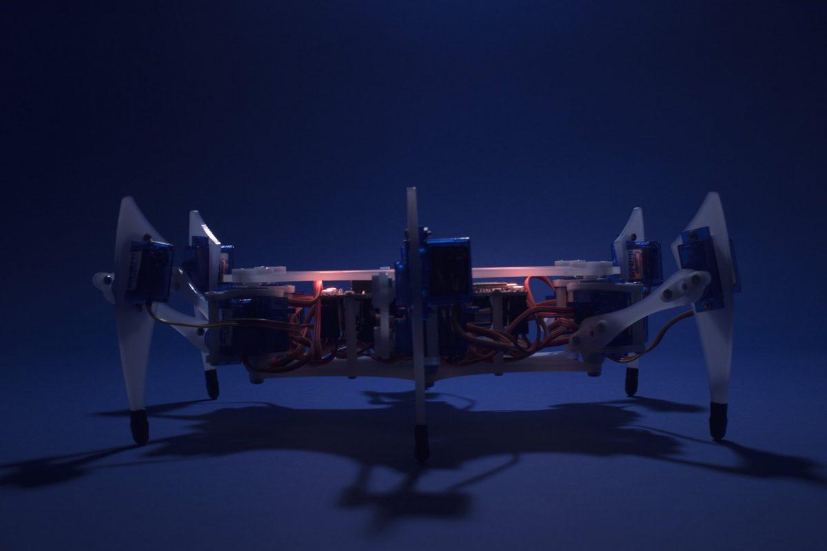 stemi robot 2 e1527311021780