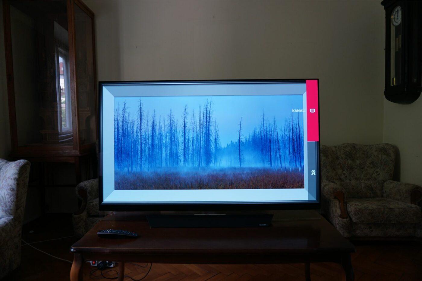 LG OLED55E8V 9