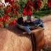 Huawei Watch GT 2 11