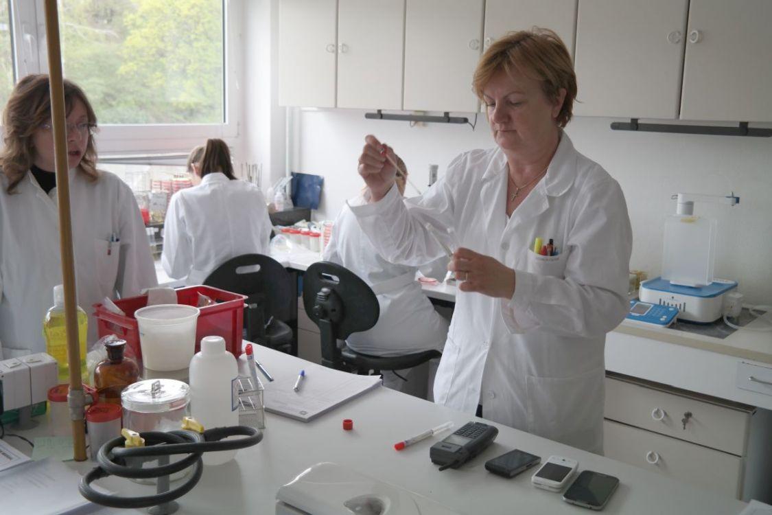 Test bakterije na mobitelu 3 1